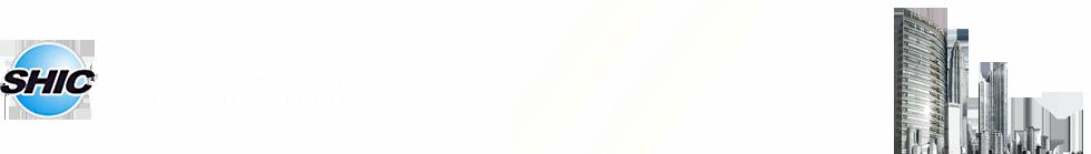 1-甲巯基环丙基乙酸甲酯,重酒石酸卡巴拉汀Rivastigmin,吉西他滨中间体T6,盐酸伊伐布雷定-上海华初实业有限公司