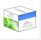 豚鼠C反应蛋白检测试剂盒