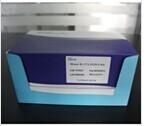 绵羊转化生长因子β1(TGF-β1)ELISA试剂盒