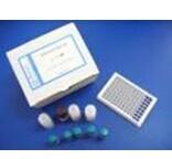 豚鼠胆囊收缩素A受体检测试剂盒