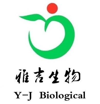 上海雅吉生物科技有限公司 公司logo