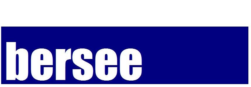 北京博尔西科技有限公司 公司logo