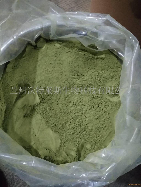 茶末粉    肥料原料   大货包邮