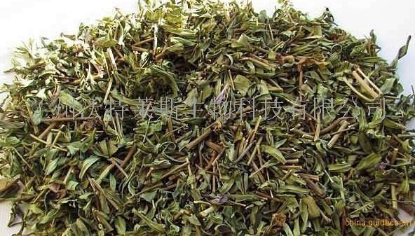 黄芩黄酮10%-50%  食品级原料    沃特莱斯