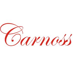 武汉卡诺斯科技有限公司 公司logo