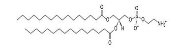 923-61-5,DPPE,二棕榈酰基磷脂酰乙醇胺