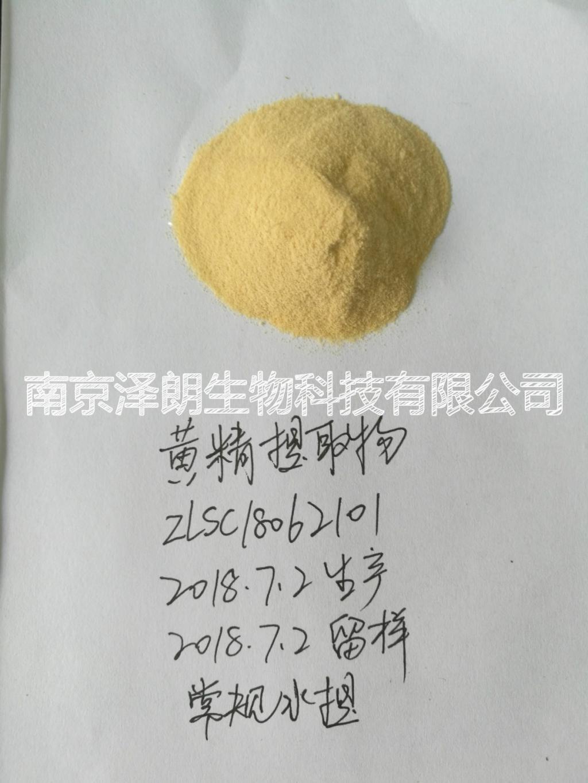 黄精提取物 比例提取物  代加工
