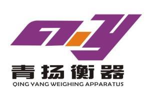 宁海县青扬计量器具经营部公司logo