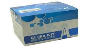 人甲状腺素(T4)elisa试剂盒-主营ELISA试剂盒 产品图片