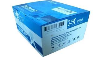 人胰岛素(INS)elisa试剂盒|主营ELISA试剂盒