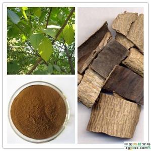 杜仲提取物绿原酸25%产品图片