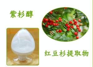 紫杉醇 CAS 33069-62-4 红豆杉提取物