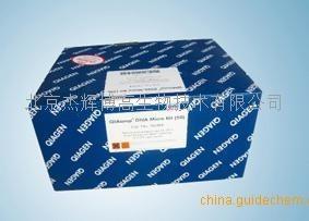 miScript miRNA PCR Array - Plate C - 2 plates德国QIAGEN产品图片