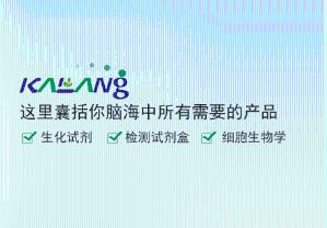 2,6-二异丙基苯胺,CAS:24544-04-5产品图片