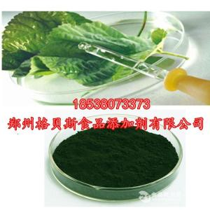 叶绿素铁钠盐生产厂家