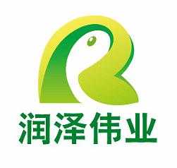 武汉润泽伟业科技有限公司公司logo