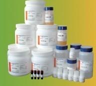 Tris-Tricine-SDS-PAGE凝胶制备试剂盒