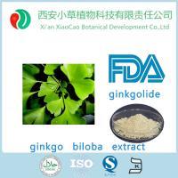 现货低价供应CP2015版纯天然银杏叶提取物24/6 产品图片