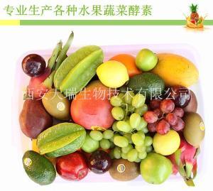 水果酵素粉 厂家 可定做各种水果酵素