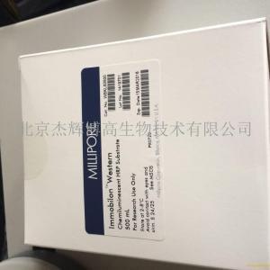 鱼胰岛素样生长因子1(IGF-1)ELISA试剂盒说明书