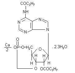 二丁酰环磷腺苷钙