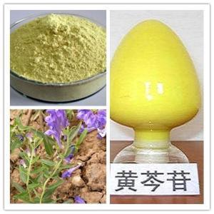 黄芩素99%  新品推出  技术*