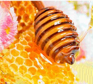 蜂胶提取物黄铜30%