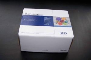Aβ42 检测试剂盒
