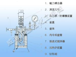 实验室316L不锈钢反应釜,磁力反应釜,304不锈钢高压釜的产品图片