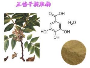 鞣酸 单宁酸 五倍子提取物 五倍子单宁酸 81% --92%