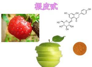 根皮甙 根皮苷产品图片