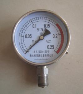 不銹鋼壓力表Y100B