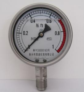 不锈钢耐震压力表YTN100F