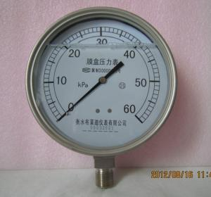 不锈钢耐震压力表YEN100F
