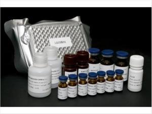 人α-内吗啡肽(α-EP)ELISA测定试剂盒产品图片