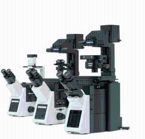 奥林巴斯荧光显微镜|倒置荧光显微镜|超低价格荧光显微镜现货代理产品图片