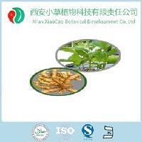 现货直销姜黄提取物 姜黄素Curcuma Extract