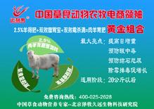 绵羊育肥专用预混料