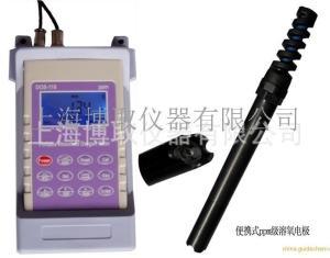 便携式溶氧仪/养殖手持溶氧仪/污水便携溶氧测量/溶氧仪厂家直销