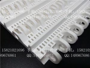 M-SNB-M3塑料网带 产品图片