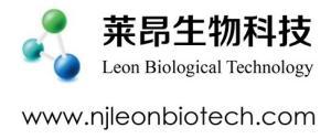 南京莱昂生物科技亚虎777国际娱乐平台公司logo