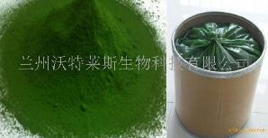 小球藻粉   绿藻粉   沃特莱斯供应  包邮