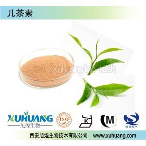 ISO厂家供应优质儿茶素90%