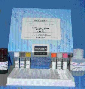 小鼠氨基脲敏感性胺氧化酶(SSAO)ELISA试剂盒
