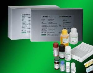 小鼠Ⅲ型前胶原(PⅢNP)ELISA试剂盒
