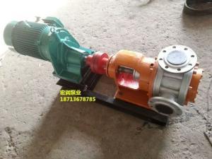遼寧高粘度泵-NYP-3/1.0高粘度轉子泵-小流量泵價格