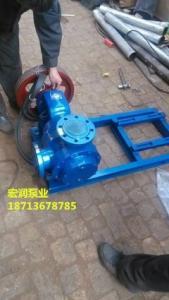 安徽涂料廠-采購NYP-30/1.0型高粘度轉子泵-現貨