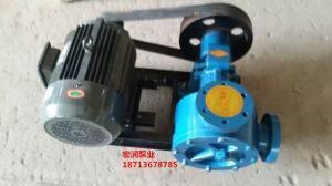 山東膠廠訂購-NCB-16/0.5型高粘度內齒泵-宏潤油泵