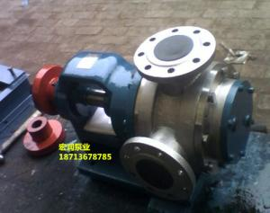 產品價格-宏潤NYP-12/1.0型高粘度轉子泵-發貨貴州