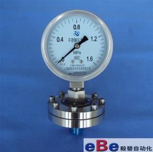 螺紋式全不銹鋼隔膜壓力表Y-100BF/ML  M20*1.5